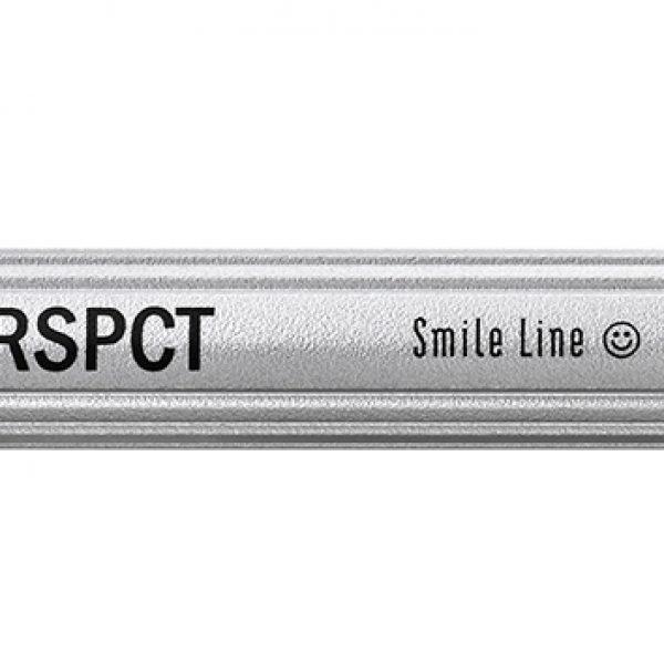 RSPCT, Pincel completo 8R. Para cargar, estratificar o modelar cerámica dental